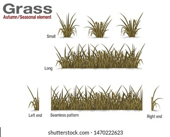 Set of dry grass on transparent background