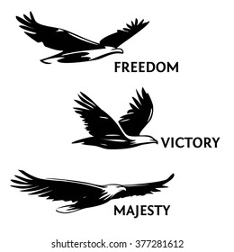 Set of eagles, painted with a brush. Silhouettes of birds of prey soaring in the sky. The logo, a symbol of greatness, victory and freedom.