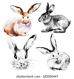 Set of Easter rabbits. Hand drawn sketch and watercolor illustrations