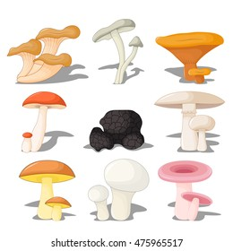 set edible mushrooms with shadow, three-dimensional on white background