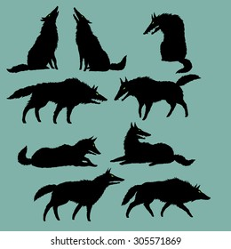 Set of editable vector silhouettes of wolves, wolf pack has a rest, black on grey, isolated, freehand drawing