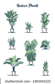 Set of eight different beаutiful indoor plants in white pots - rubber tree, staghorn fern, fiddle leaf fig, aloe, monstera, golden pothos, banana plant, snake plant