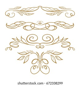 Set of elegant floral elements for your design