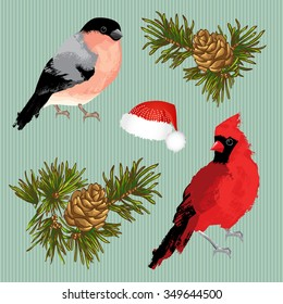 Set of element for merry christmas or happy new year. Bullfinch, cardinal bird, fir-cone and hat on striped background