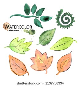 A set of elements from orange and green leaves. Nature. Watercolor, vector.