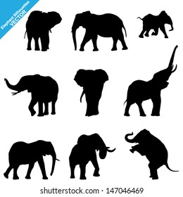 Set of Elephant Silhouettes. Vector Illustration