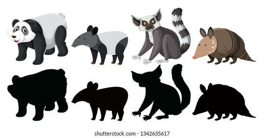 Armadillo Picture Images, Stock Photos & Vectors | Shutterstock