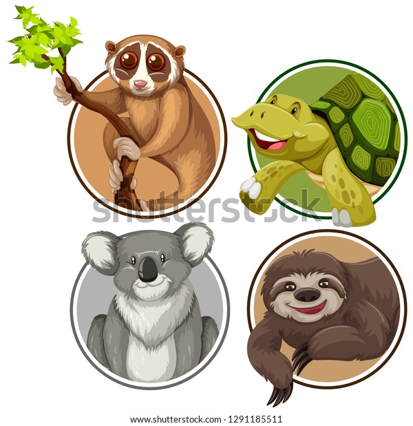 Set Exotic Animals Circle Banner Illustration Stock Vector ...