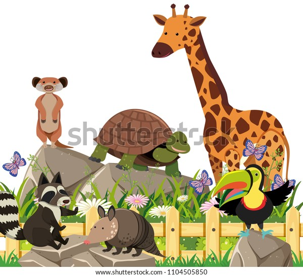 Set Exotic Animals Illustration Stock Vector (Royalty Free) 1104505850
