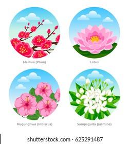 Set of exotic flowers. Meihua (plum), lotus, mugunghwa (hibiscus), sampaguita (jasmine). Vector illustration.