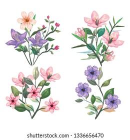 set exotic flowers plants and botanic leaves
