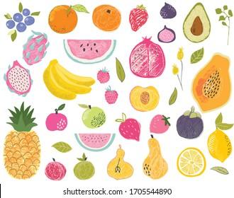 Set of exotic fruits in modern vector hand drawn scandinavian style,summer symbol, fruit salad.Doodle textured cute fruits, pineapple,apple,watermelon,mango,fig,lemon,strawberry,avocado,papaya