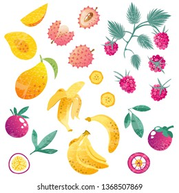 Set with exotic fruits, whole and sliced. Hand drawn vector threadbare tropical illustration on white background. Mango, banana, mangosteen, passion fruit, raspberry, lychee and leaves.