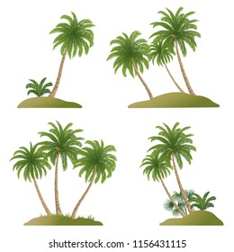 Set Exotic Landscapes, Palm Trees with Green Leaves and Nuts, Tropical Plants and Grass, Isolated On White Background. Vector