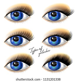 Set eyes with black eyelashes of different types. Vector illustration.