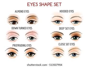 Set of Eyes shape. Different shapes - close set, wide set, protruding on white background. Vector illustration.