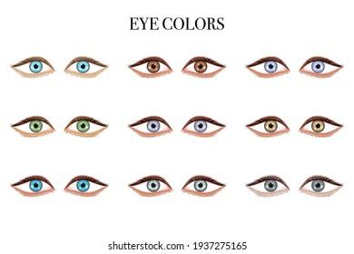 Set of Eyes shape.  wide set, protruding isolated on white background. Vector illustration.