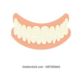 Set of false teeth. Implanted jaw.