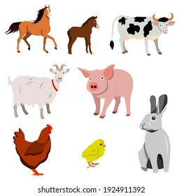 A set of farm animals. Vector isolated on a white background. Horse, foal, cow, Goat, pig chicken, chicken, Rabbit.