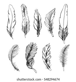 Set of feather on white background. One color. Hand drawing illustration for your design