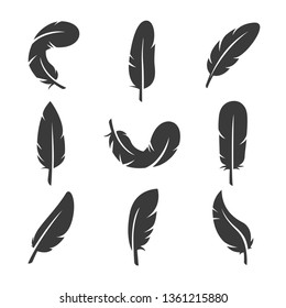 set of feathers icon vector illustration