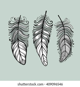 Set of feathers. Vector.
