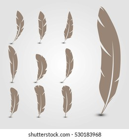 Set feathers. Vector illustration.