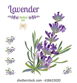 Set festive border and elements with Lavender flowers for greeting card. Botanical illustration are drawn by hand