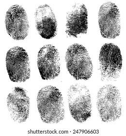 Set of fingerprints, vector illustration isolated on white