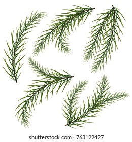 A set of fir branches. New Year's and Christmas. The Christmas tree.