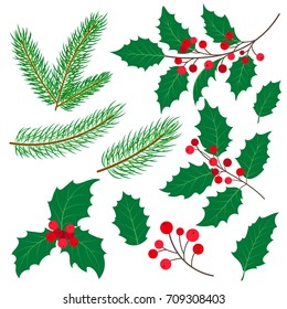 Set of fir tree and mistletoe branches with leaves and berries, Christmas decoration, flat cartoon style vector illustration on white background. Fir tree and mistletoe set, twigs, leaves and branches
