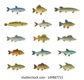 Set of fish