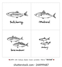 Set of fish illustrations - Hand drawn sketch - vector