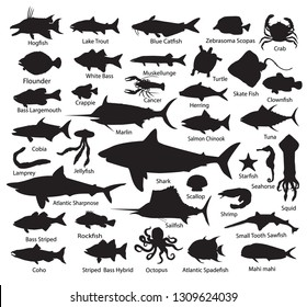 Set fish silhouettes - Vector