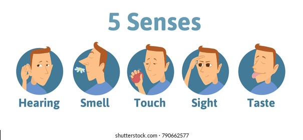 Set of five human senses icon: hearing, smell, touch, vision, taste. Icons with funny man character in circles. Vector illustration for kids, isolated on white background.