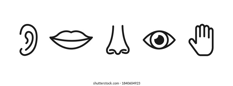 Set of five human senses: sight, smell, hearing, touch, taste. Simple line icons.