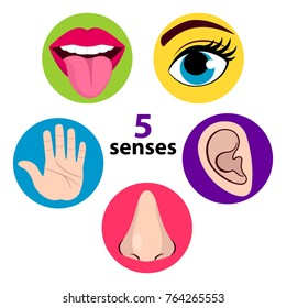 Set of five human senses: vision (eye), smell (nose), hearing (ear), touch (hand), taste (mouth with tongue) . Vector illustration isolated on white background