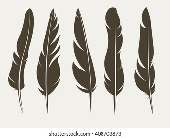 Set of five vector silhouettes of feathers