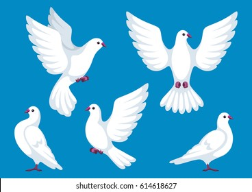 Набор из пяти белых голубей. Красивые голуби вера и любовь символ.