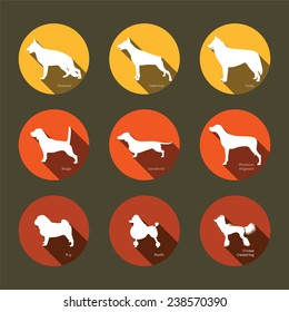 Set of flat icons with dogs silhouettes. Hunting dogs, service dogs, toy dogs. Design elements for web and mobile applications