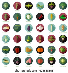 Set of flat round vegetable icons
