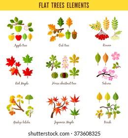Set of flat trees elements. Apple tree, Oak tree, Rowan, Red maple, Horse chestnut tree, Sakura, Ginkgo biloba, Japanese maple, Birch. Vector illustration
