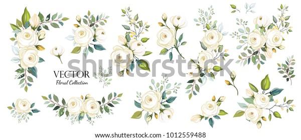 Набор цветочных ветвей. Цветок белая роза, зеленые листья. Концепция свадьбы. Цветочный плакат, приглашать. Векторные схемы оформления поздравительных открыток или приглашений