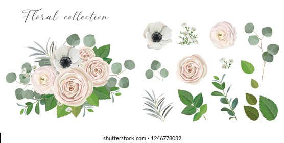 Set of floral elements. anemone ranunculus rose peony flowers, eucalyptus branches and green leaves. Vector arrangements for greeting card or weddong invitation design