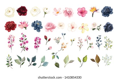 Set of floral elements. Flower red, burgundy, navy blue rose, green leaves. Wedding concept - flowers. Floral poster, invite. Vector arrangements for greeting card or invitation design