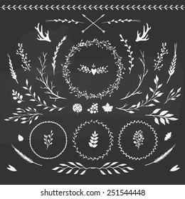 set of floral elements: leaves, flowers, branches and wreathes
