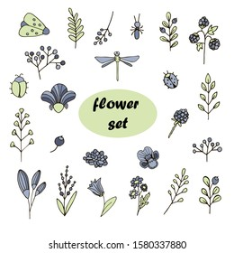set of floral elements, twigs, berries, insects, beetle, ants, ladybug, moth, butterfly, flowers, violet, dragonfly vector hand-drawn color sketch. Stock illustration. on white isolated background