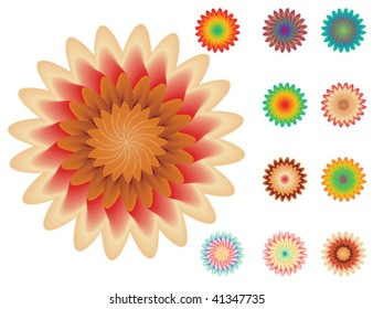 set of floral elements for your design on white background, vector illustration, raster variant is also available