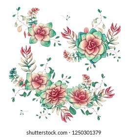 Set of floral succulents compositions in hand draw style. Composition of plant and branches. Vintage elements for invitations, greeting cards, covers and other items.