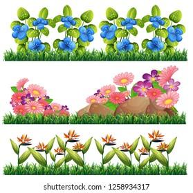 Set of flower decoration illustration